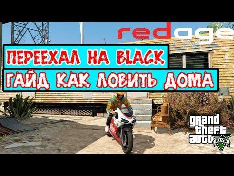 ГАЙД КАК ЛОВИТЬ ДОМА   ПЕРЕЕХАЛ НА BLACK   Redage GTA 5 RP