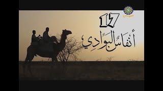 انفاس البوادي (17) - رمضان 2019
