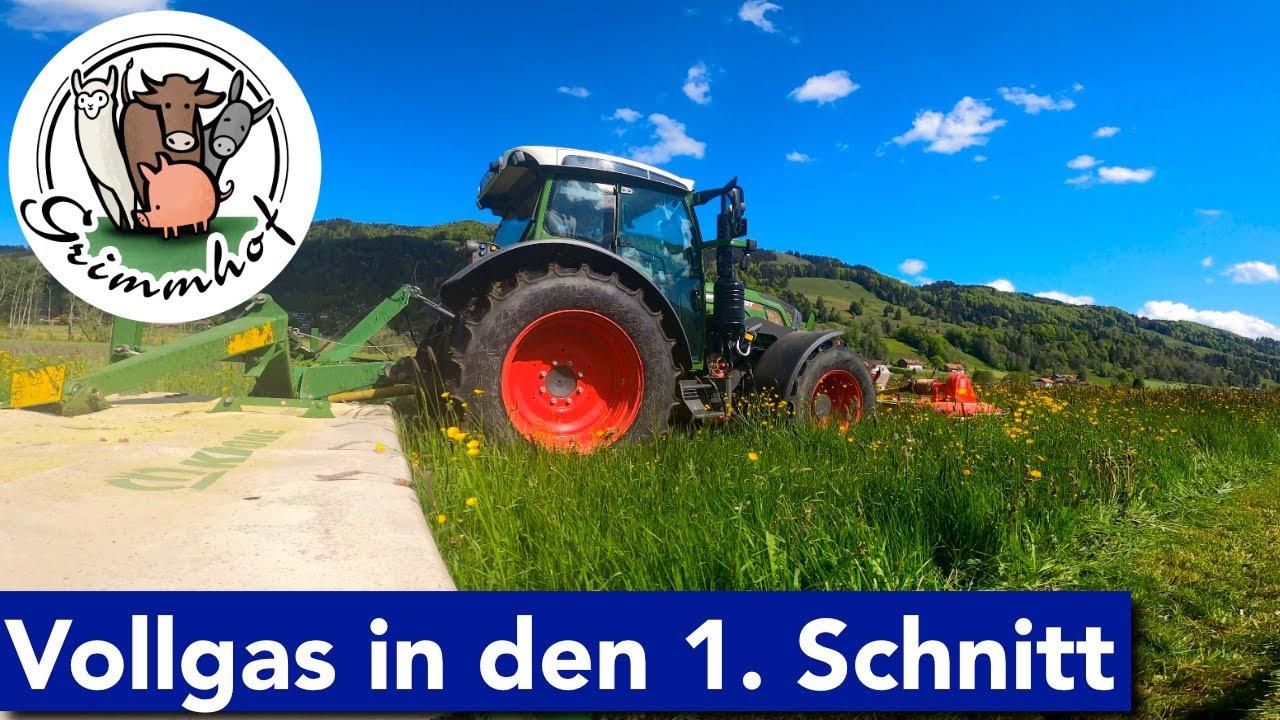 FarmVLOG#118 - VOLLGAS in den 1. Schnitt