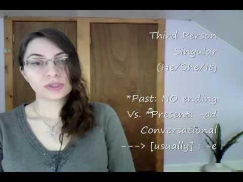 Farsi / Persian Lesson: Verbs - To See (27)