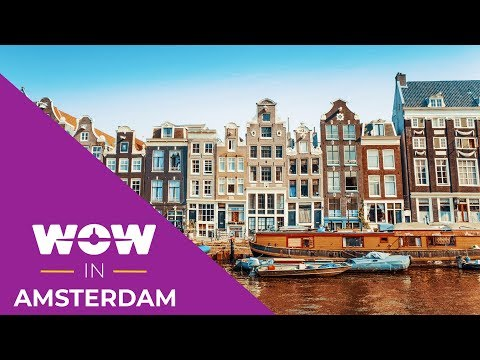 WOW air travel guide application // AMSTERDAM