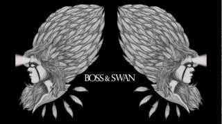 Mumford & Sons - I Will Wait (Boss & Swan Cover)