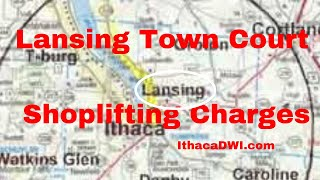 Lansing Town Court, Dealing with Shoplifting (Petit Larceny) Charges