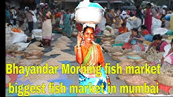 Bhayandar fish market biggest fish market in Mumbai early morning market Sunday early morning fish