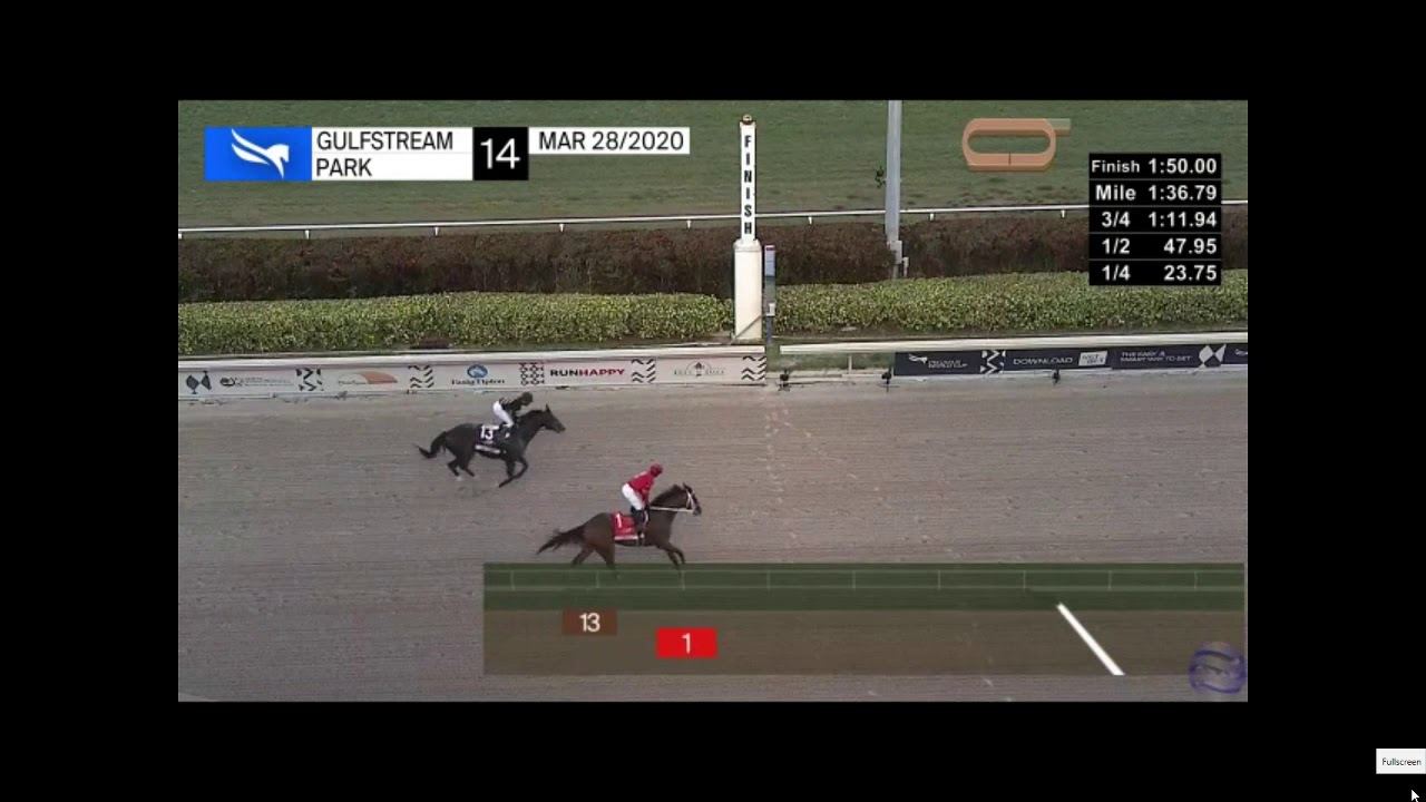 2020 Florida Derby full race replay plus analysis - YouTube