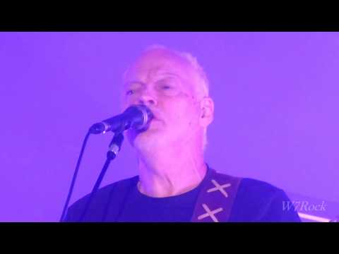 David Gilmour Coming Back to Life  Live...