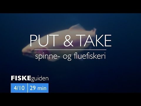 FISKEguiden 4/10: Put & Take