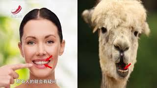 《真是想不到》是江西卫视联合中国科学技术馆推出的一档青少年科普节目...