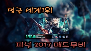 정글 1위 피넛 매드무비 (리신 , 렝가 니달리) / Peanut jungle (Lee sin,nidalee, rengar)2017 Montage