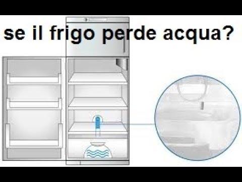 Il frigorifero perde acqua doovi for Frigo no frost non raffredda