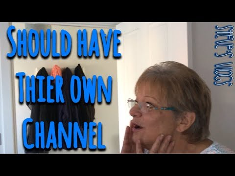 Should have their own Channel | Daily Vlog | #stevesvlogs