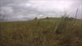 Охота на сурка в Татарстане