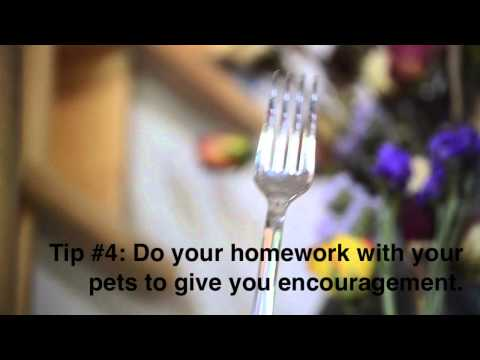 A Fork's Guide to Homework