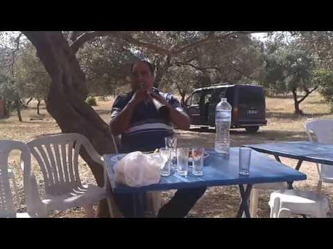 Dibekdereli Servet Karacan-Yeşil Ördek Gibi