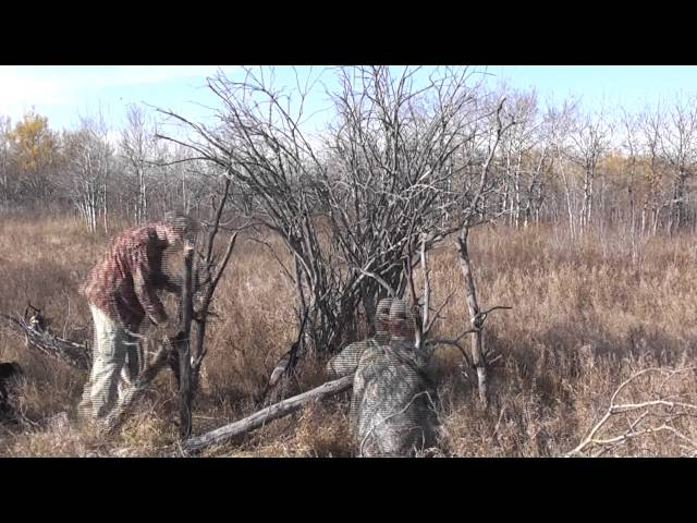 How to Build a Ground Blind in 2 Minutes!