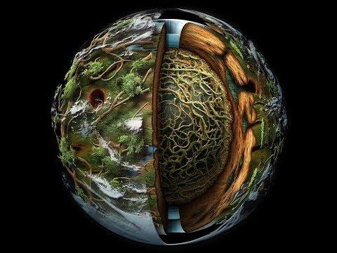 Глобальный проект - Живая планета - Алексей Полянский