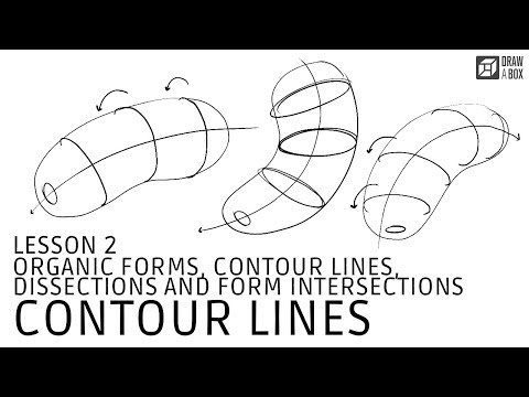 Drawabox Lesson 2, Exercise 2: Organic Forms with Contour Lines