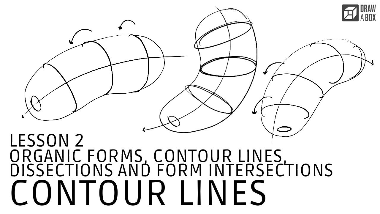 Drawabox Lesson 2, Exercise 2: Organic Forms with Contour