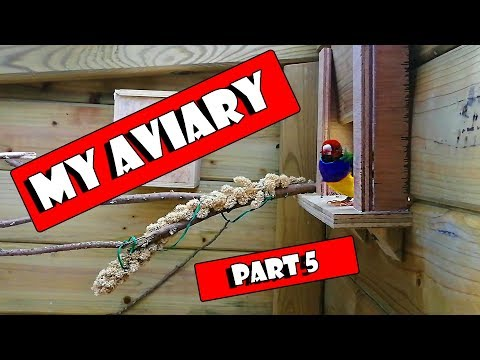 How To Build A Bird Aviary Setup, Part 5, The Indoor Area