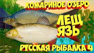 русская рыбалка 4 Лещ Язь озеро Комариное рр4 фарм Алексей Майоров russian fishing 4