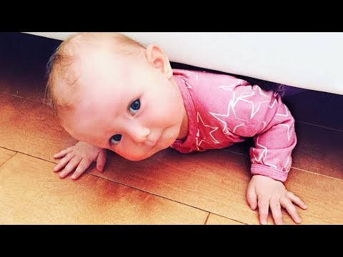 Naughty Babies Trouble Maker Fun Fails and Moments #2 - Funniest Home Videos