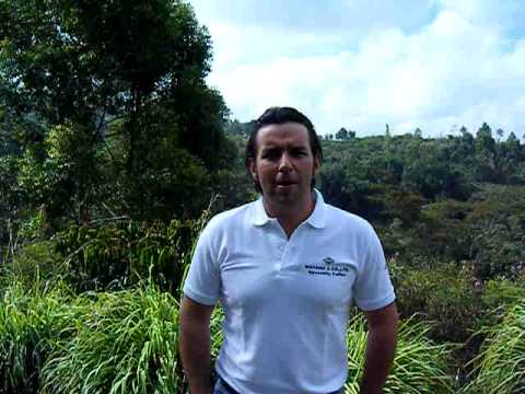 Colombia Santuario Estate