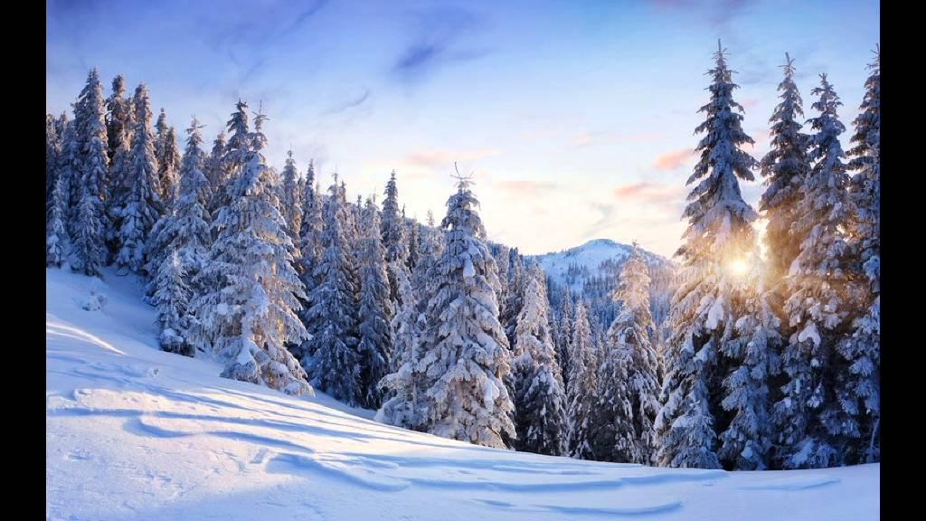 Картинки по запросу красивая зима