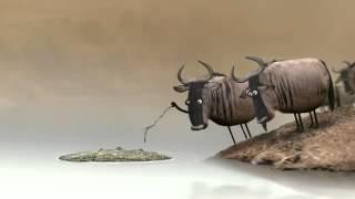 animationsfilm gnu und krokodil