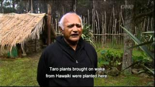Part 1 of 2 a Maori Paa in pre-European times