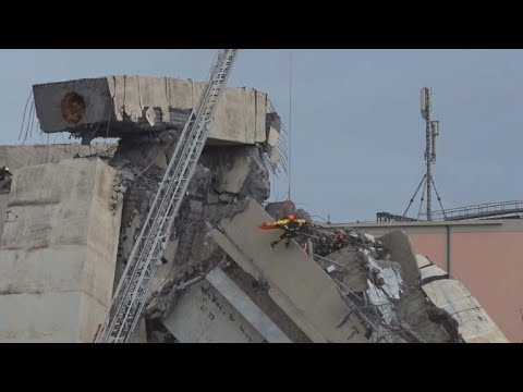 Italy: multiple dead in motorway bridge collapse in Genoa