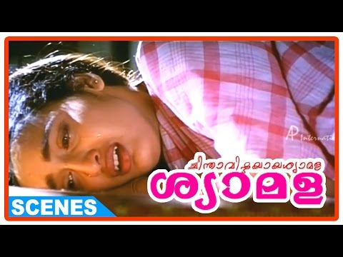 Chinthavishtayaya Shyamala Malayalam Movie - Sreenivasan deserts his family
