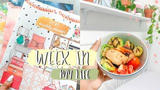 Week in my life #3: influencer events,cooking healthy,new stationery [roxy james]#vlog #weekinmylife