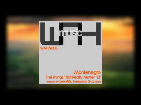 Montenegro - En la Escena (Original Mix) [We Are Here Music]