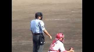 「第2の白井」 NPB審判員 水口拓弥 #54 NPB Umpire Takuya Mizuguchi #54 山路哲生 検索動画 26