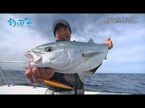 【釣り百景】#314 晩秋の大阪湾と日本海 魅惑の青物ジギングを満喫!