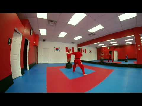 White Tiger Taekwondo Peterborough Canada Youtube