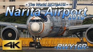 【4K】1.5Hour Spotting @Narita Airport Rwy16R (May 26, 2016) the Greatest Airport Spotting