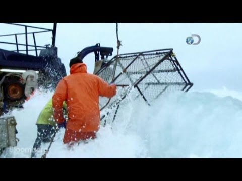 Deadliest Catch: Do You Have What It Takes To Do This Job?