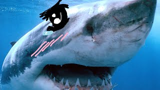 KAWAII SHARKS! (Stranded Deep #2)