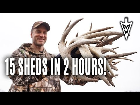3 Best Spots To Hunt, Shed Hunting Update | Midwest Whitetail