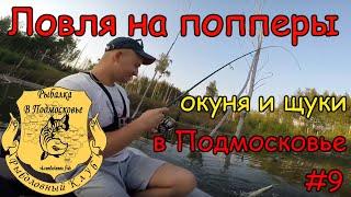 Ловля окуня и щуки на попперы в Подмосковье.Отчеты о рыбалке. #9