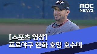 스포츠 영상 프로야구 한화 호잉 호수비 20190702…
