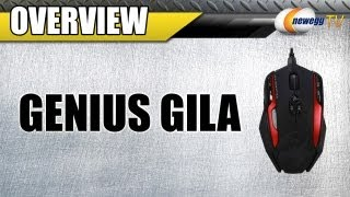 Newegg TV_ Genius Gila 12 Buttons 8200 dpi MMO/RTS Professional Gaming Mouse Overview