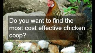 Which Chicken Coop With Run Will Be Best? Info On Choosing A Chicken Coop With Run | Designs & Plans