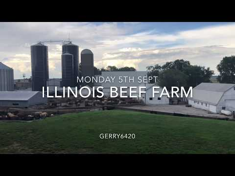 ILLINOIS BEEF FARM
