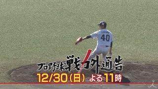 『プロ野球戦力外通告』12/30(日) 野球を諦めきれない男と妻の戦い!! 運命のトライアウトの結末は!?【TBS】