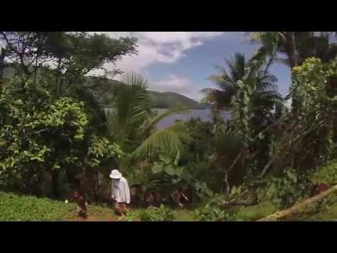 Papua New Guinea - Milne Bay Province.