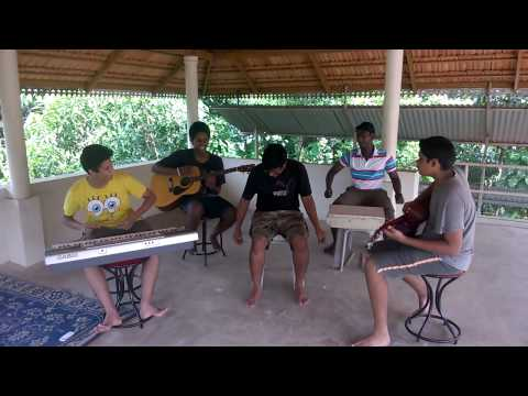 fish rock cover