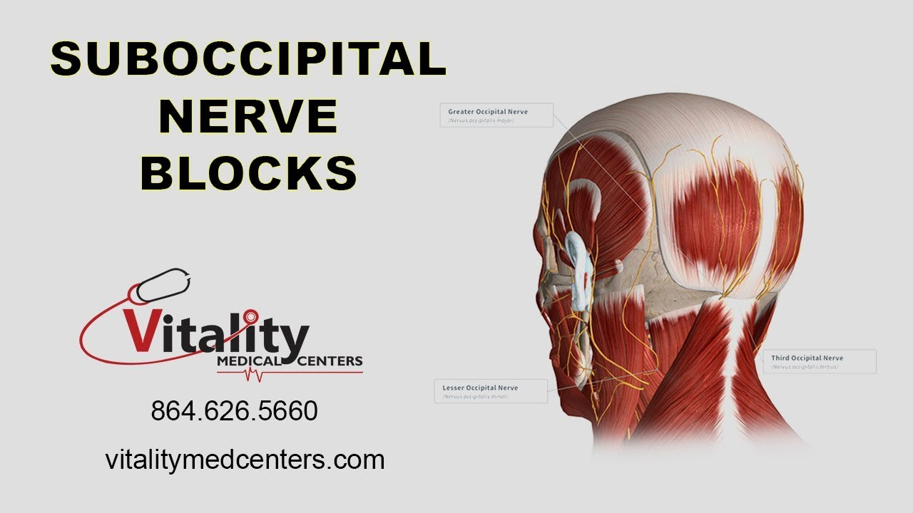 Awesome Lesser Occipital Nerve Anatomy Images - Anatomy and ...