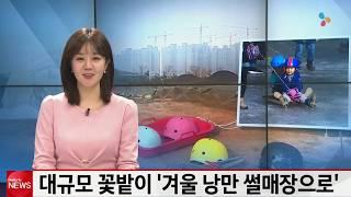 대규모 꽃밭이 '겨울 낭만 썰매장으로' [CJ헬로뉴스 2019.12.10.]썸네일